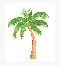 Tropical Palm Tree - Watercolor Photographic Print