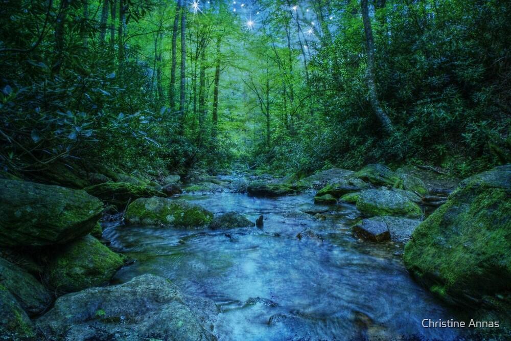 River of Dreams by Christine Annas
