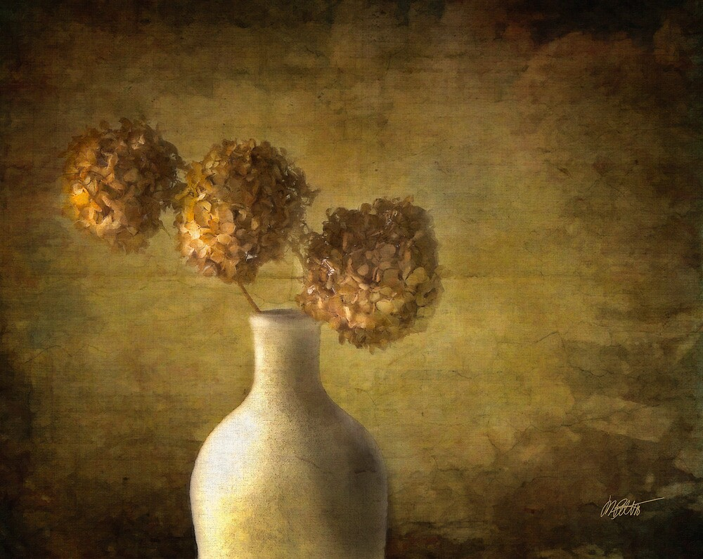 Hydrangea In Vase by Michael  Petrizzo