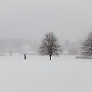 oakhill park by Tony Day