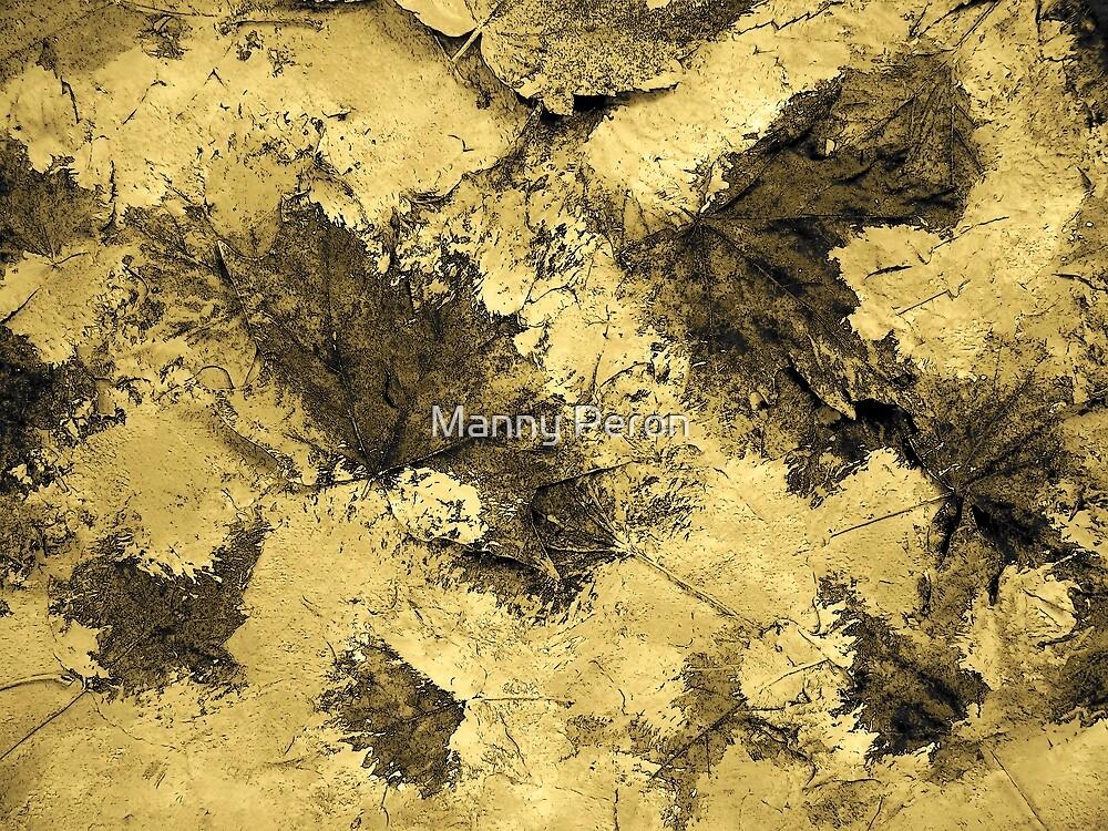 Ash Leaves by Manuel Peron