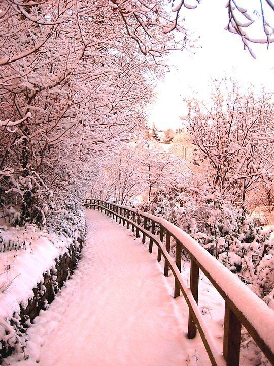 Winter time in Beautiful Devon..... by pboddy