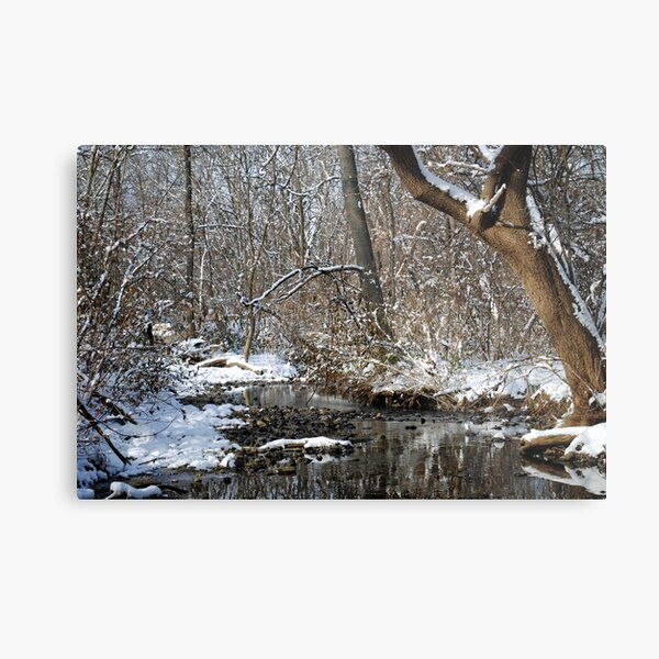 After the Snowstorm Metal Print