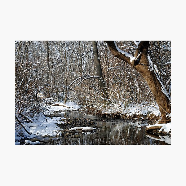 After the Snowstorm Photographic Print