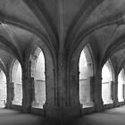 Cloisters by Paul Pasco