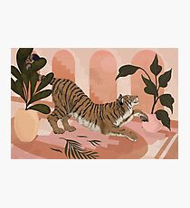 Easy Tiger Photographic Print