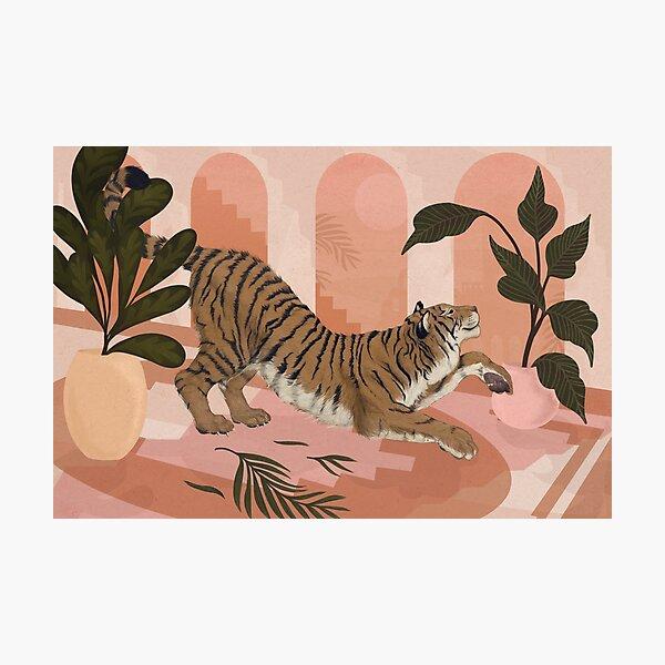 Easy Tiger Photographic Print