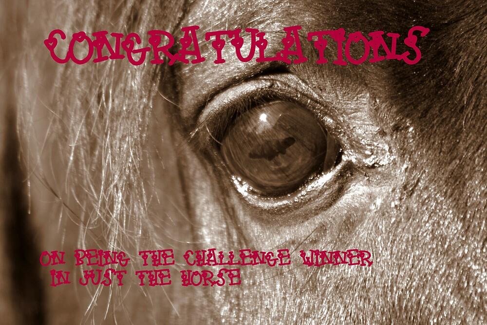 Challenge Winner - Just the Horse by hostingstuff