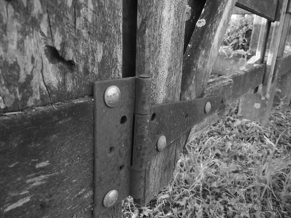 hinged by stephen walters