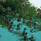 Tranquility at Karanju by Reef Ecoimages
