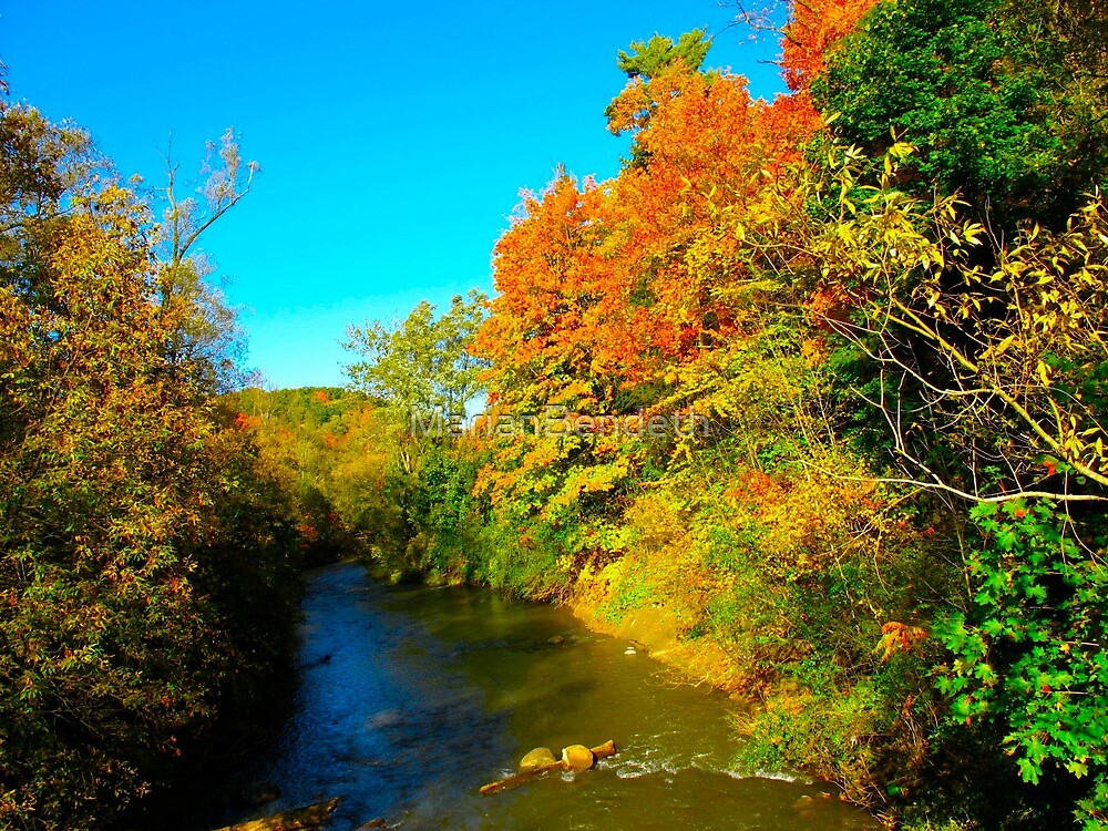 Racing through Autumn by MarianBendeth