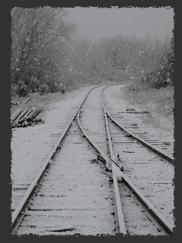 Tracks in the snow by William Carl