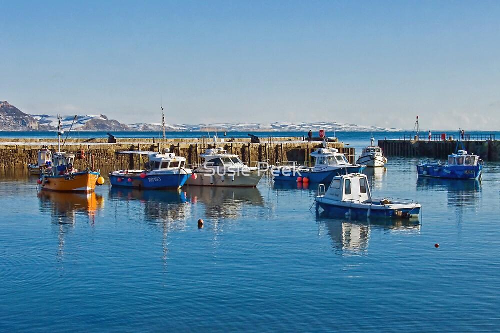 Cold Blue Harbour ~ Lyme Regis by Susie Peek
