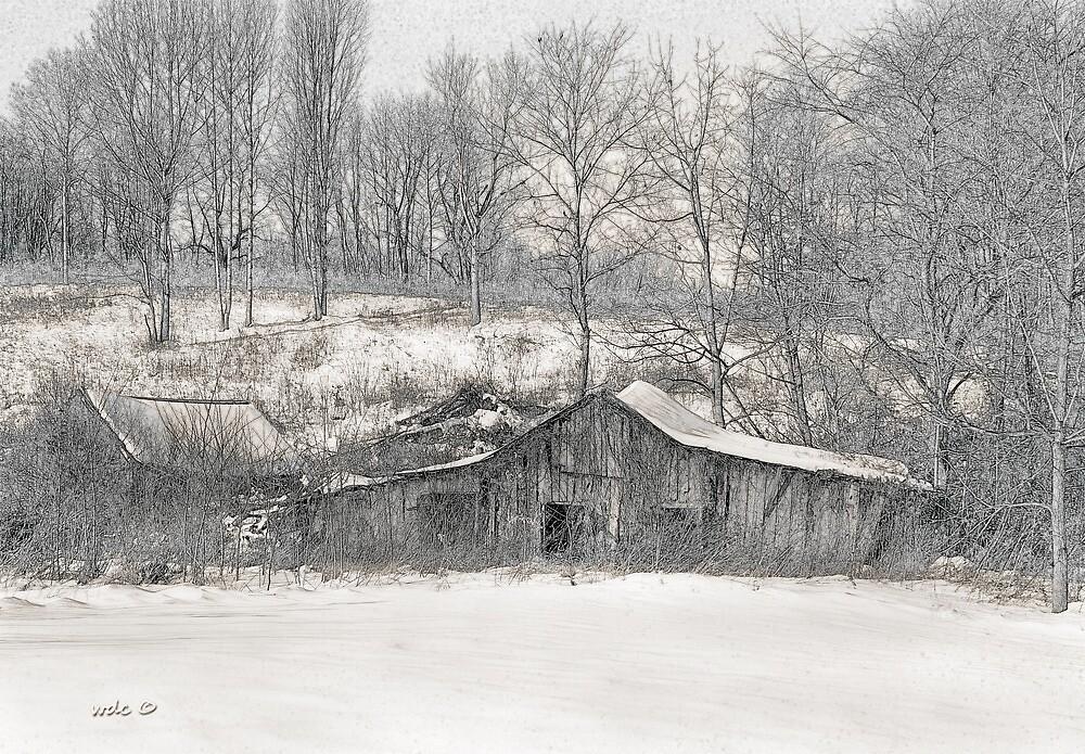 Lost Barn  by William Carl