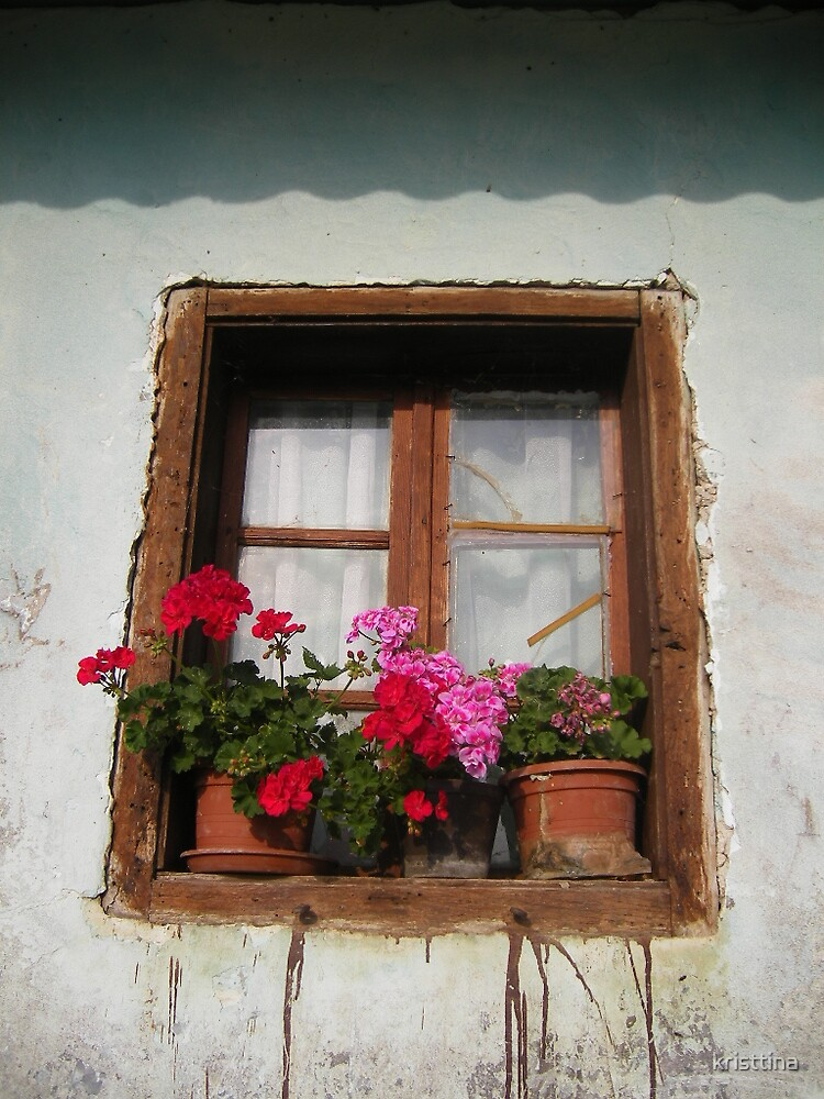 an old window by kristtina