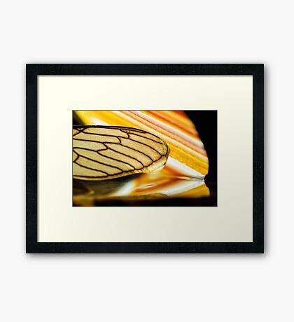 On Stolen Glass Framed Print