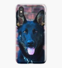 Blue Sheppy iPhone Case/Skin