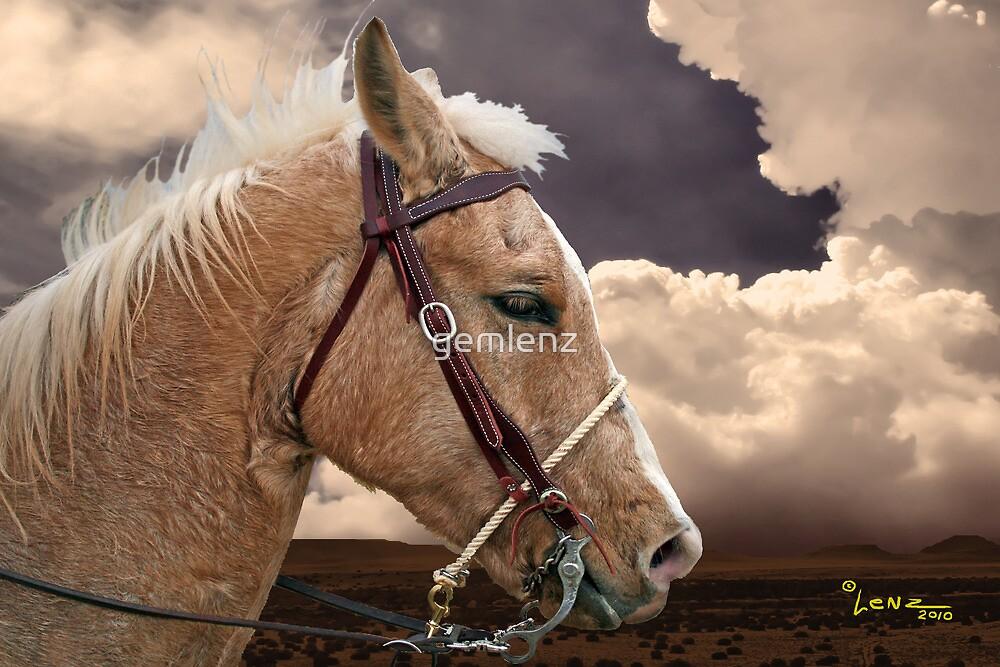 On The Prairie by gemlenz