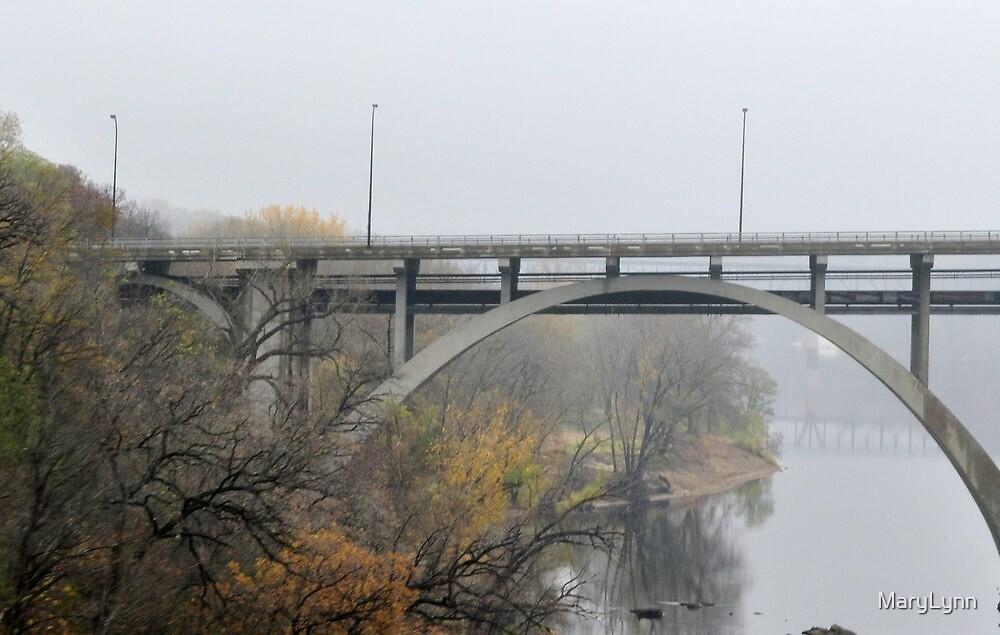 Foggy Drive by MaryLynn