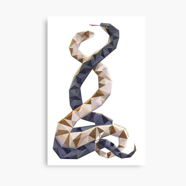 Dancing Snakes by Emma Hsiao Canvas Print