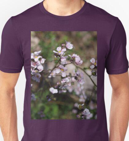 Diplopeltis hueglii (2) T-Shirt