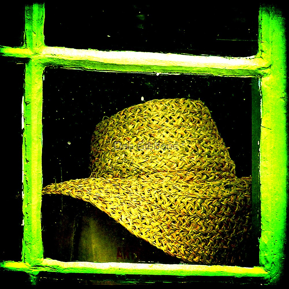 The hat in the window by Deb Gibbons