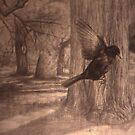Still Air - Blackbird in the Park by Nestor