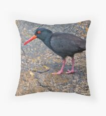 Oystercatcher Throw Pillow