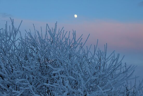 Moon over Snow by Dirk Pagel
