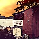 Love 2011  by S .