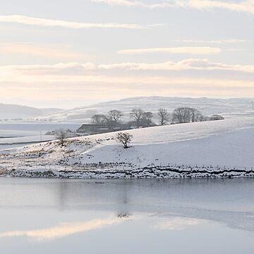 Killington Lake, Cumbria by cherryannette