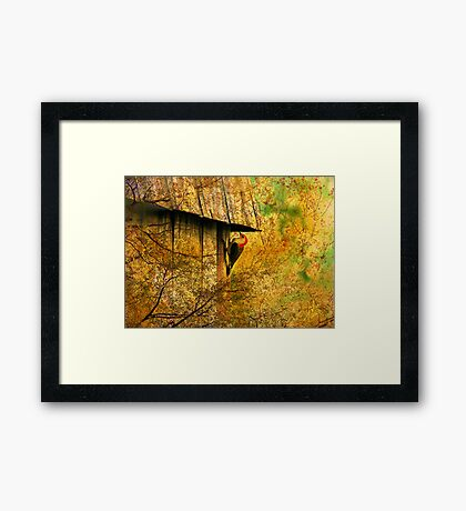 Checking For Termites Framed Print