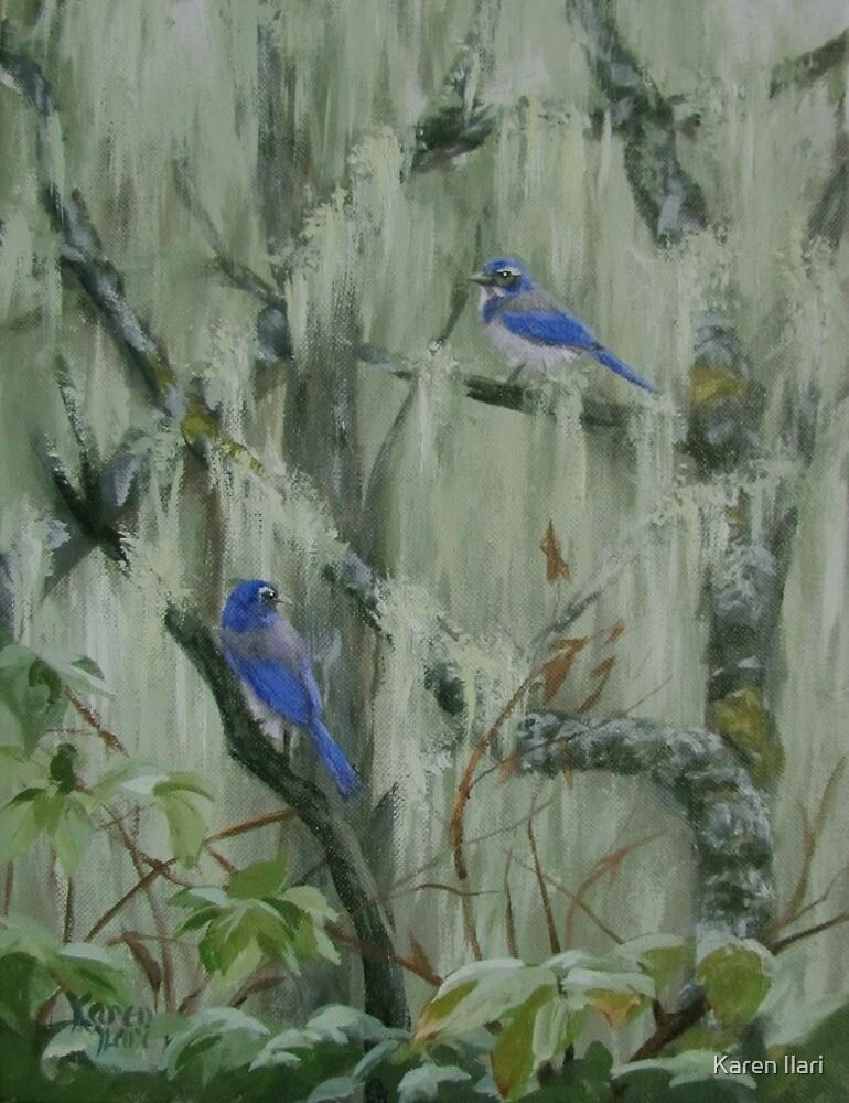 Harmonies by Karen Ilari