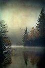 Land of the raptor... Loch Ard, Trossachs by David Mould