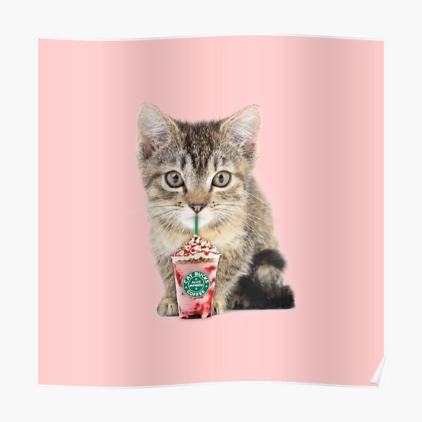 Sweet cat by Alice Monber Poster