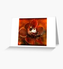 Orchid Series #3 Greeting Card