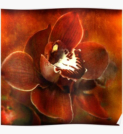 Orchid Series #3 Poster