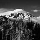 Mt Rainer  by Steve Biederman