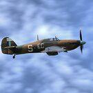 Battle of Britain Memorial flight Hurricane PZ865 (Mk IIc) by larry flewers