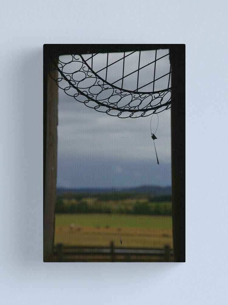 Alternate view of What Do You REALLY See When You Look Through This Window? Canvas Print