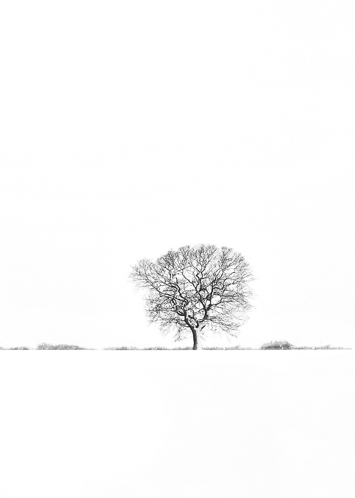 Untitled by Di Dowsett