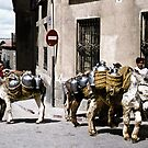 Donkey delivery by Alexander Meysztowicz-Howen