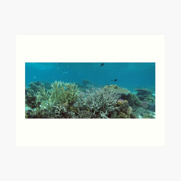 Nusatupe Lagoon Art Print