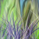 Grassy Knoll by Rick Baber
