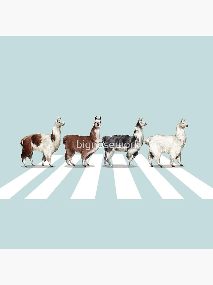 Llama The Abbey Road #1 by bignosework