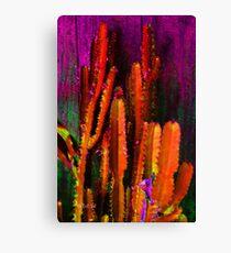 Somebody's Cactus Canvas Print