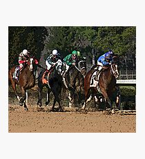 Thoroughbreds 2 Photographic Print