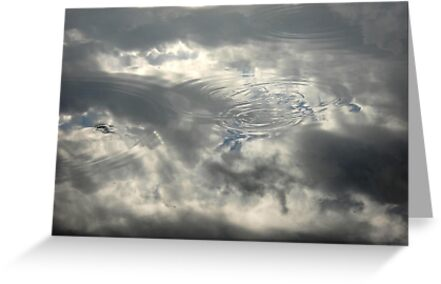 Bass Circles by May Lattanzio