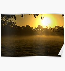 Morning on the farm Poster