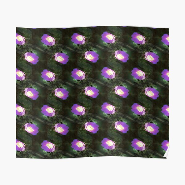 glowing old fashioned rose elegance pattern Poster